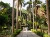 Botanischer Garten auf der Kitchener-Insel