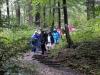 Abstieg nach Nieder-Beerbach
