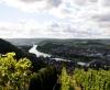Blick über die Weinfelder zum Main